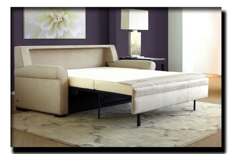 Comfortable Sleeper Sofa by Get A Trendy And Comfortable Sofa Sleeper Within
