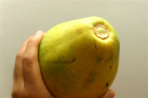 how to tell if a papaya is ripe how to buy a ripe papaya 3 easy steps with pictures