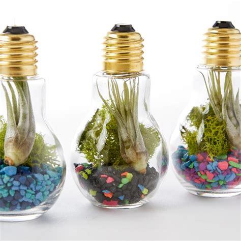 light bulb terrarium 14 diy decorative elements of re purposed everyday objects