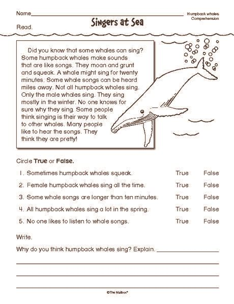 reading comprehension worksheet nonfiction whales
