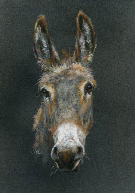 donkey gifts  images animal art animals artwork