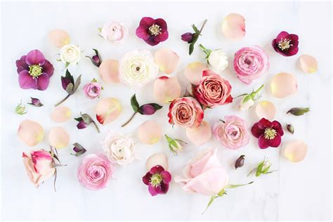 digital blooms march 2018 free desktop wallpapers justinecelina digital blooms february 2017 free desktop wallpapers