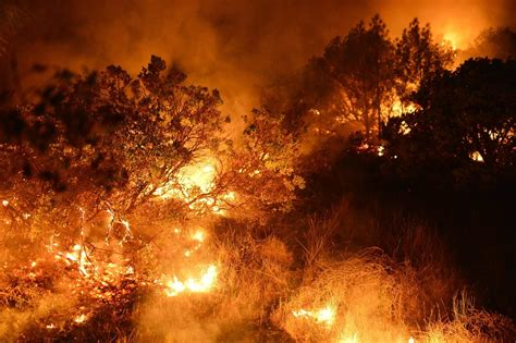 wildfire  napa county misses wineries threatens