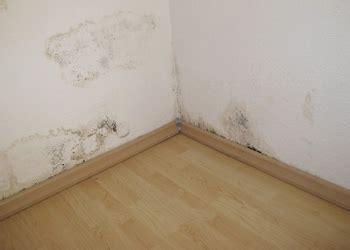 remontee capillaire mur interieur vid 233 o le traitement des murs contre les remont 233 es capillaires d humidit 233 objectif habitat