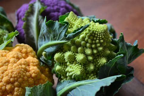 colored cauliflower nourish the roots multi colored cauliflower