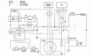 Yerf Dog Gy6 Cdi Wiring Diagram