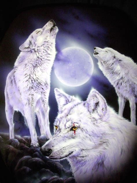 weiße Wölfe - Bild / Kunst von Petra Klein-Neerken bei