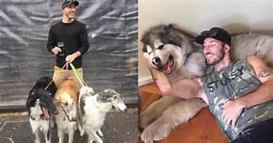 World's Biggest Dog Lover Helps Save Hundreds Of Animals