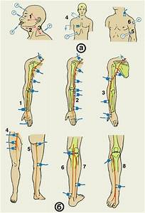Упражнения при гипертонии лечебная гимнастика