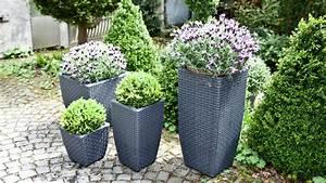 Blumenkübel Bepflanzen Sommer : portavasi alti eleganza e design minimal in giardino dalani e ora westwing ~ Eleganceandgraceweddings.com Haus und Dekorationen
