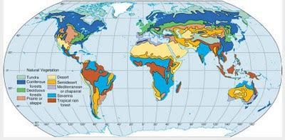 persebaran flora  dunia geographyeducation