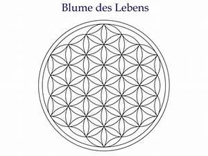 Blume Und Leben : das geheimnis der blume des lebens ~ Articles-book.com Haus und Dekorationen