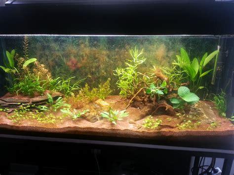 aquarium eau douce 300l
