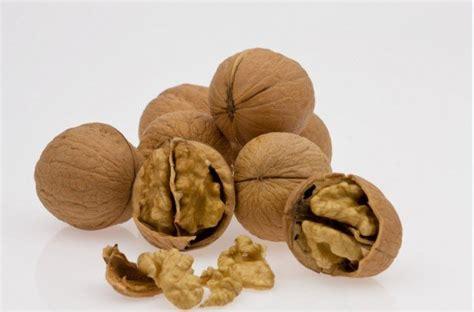 omega 3 haarwachstum diese 7 lebensmittel lassen deine haare schneller wachsen lifestyle national vol at