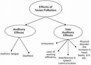 Noise Pollution In India  Causes And Effects Of Noise