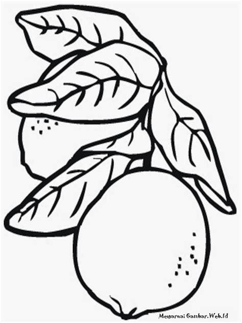 contoh gambar mewarnai gambar buah ceri