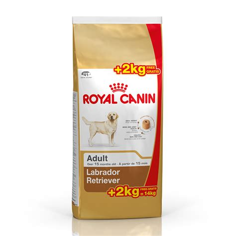Royal Canin 30 by Royal Canin Labrador Retriever 30 Adulto Perro