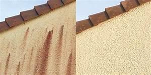 Anti Mousse Et Hydrofuge 2 En 1 : quel est le meilleur anti mousse pour toiture gallery of traitement antimousse et peinture de ~ Melissatoandfro.com Idées de Décoration
