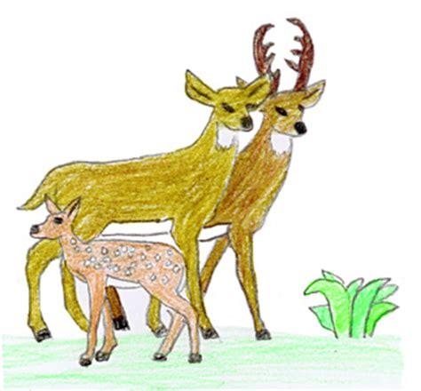 exploring nature blog   wordpress site page