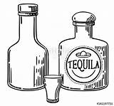 Tequila Bottle Vector Glass Getdrawings sketch template