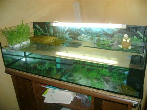 table basse aquarium pour tortue ezooq