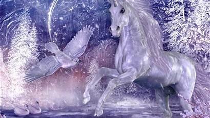 Unicorn Wallpapers Pixelstalk