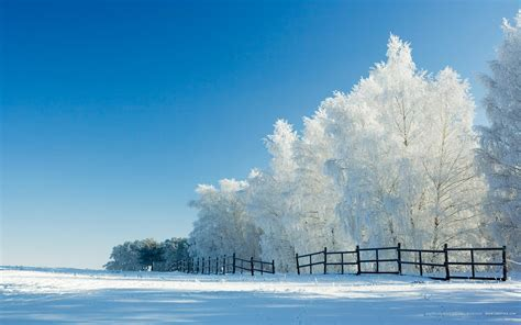 Wallpaper Of Desktop by Winter Desktop Wallpaper Widescreen Wallpaper Bits