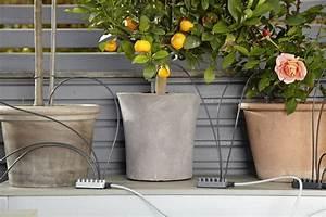 tipps und tricks fur deinen mini garten With französischer balkon mit garten bewässerungssystem gardena