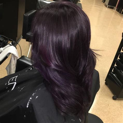 Black And Brown Hair Color Ideas by 50 Glamorous Purple Hair Color Ideas Destined To
