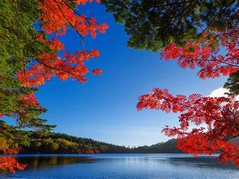 autumn, Fall, Lake Wallpapers HD / Desktop and Mobile ...