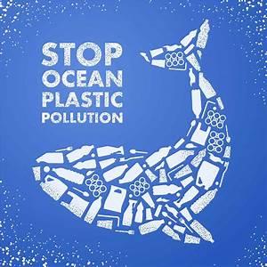 No Plastic Faqs