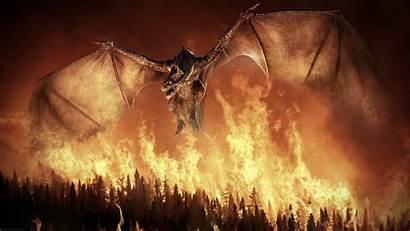 Fire Wings Dragon Forest Wallpapers Flight Wallpapersafari