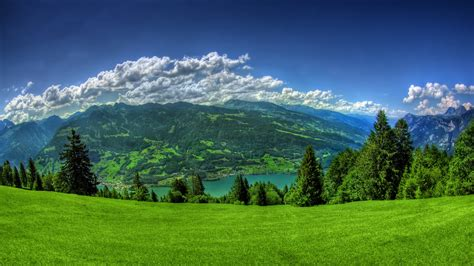 Top Nature Picture by Nature Landscape Lake Clouds Grass Walensee