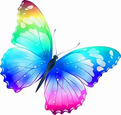 Mariposas Dibujos Oria Colores