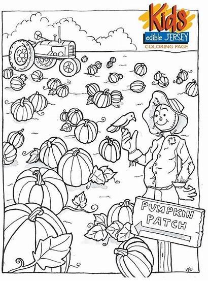 Pumpkin Coloring Pages Patch Preschool October Pumpkins