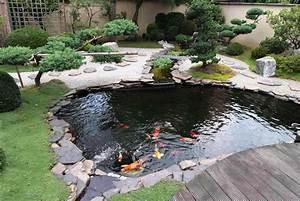 Backyard Fish Ponds Picture Ideas
