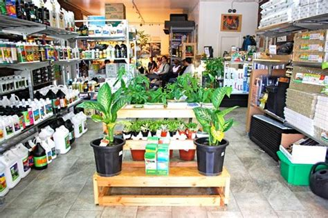 Hydrokultur Shop by Discount Hydroponic Stores Where To Buy Local Supplies