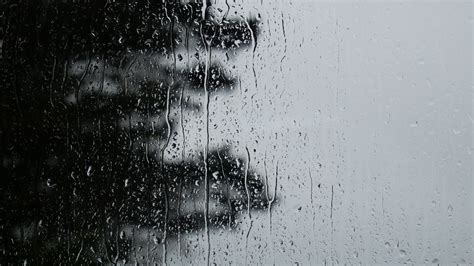 Rainy Background Rainy Day Background Texture Stock Footage