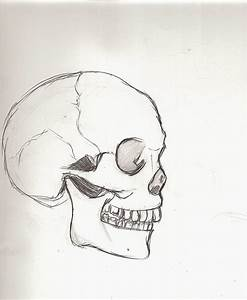 Skull Drawing Tumblr Easy images