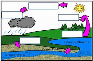 Water Cycle Unlabeled  With Images