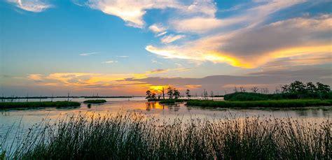 protecting  mississippi river delta national wildlife