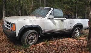 Dodge Dakota New Autos Post