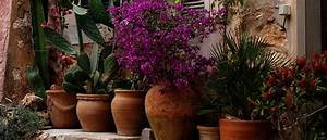 Bäume Für Kleine Gärten : kleine g rten gestalten gartenideen f r kleine g rten ~ Whattoseeinmadrid.com Haus und Dekorationen
