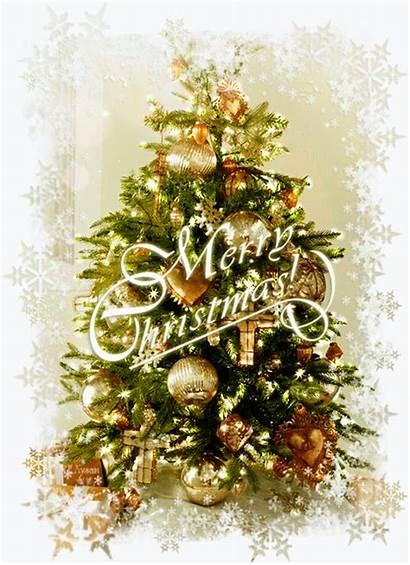 Merry Christmas Tree Quote Gifs Winter Chritsmas