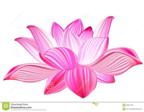 Lotus Realistic Vector Illustration Stock Vector