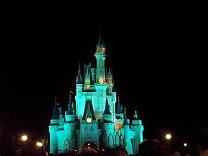 Castle at Night - Picture of Walt Disney World, Orlando ...