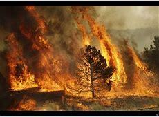 Arizona Wildfire Wallow Fire Still Grows Posing Health