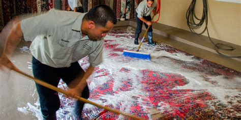 carpet cleaning nyc  local carpet rug cleaners