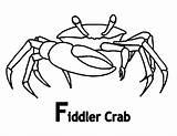 Crab Coloring Fiddler Cartoon Pages Grab Drawings Sheet Print Printable Button Using Getdrawings Getcolorings Feel Well sketch template