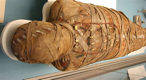 ancient history  mummies discovered  cancer